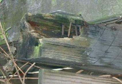 Træstolpe rådnet i toppen